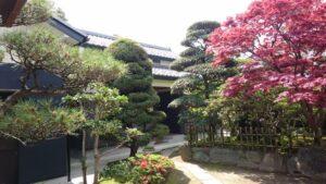 春の庭 (2)
